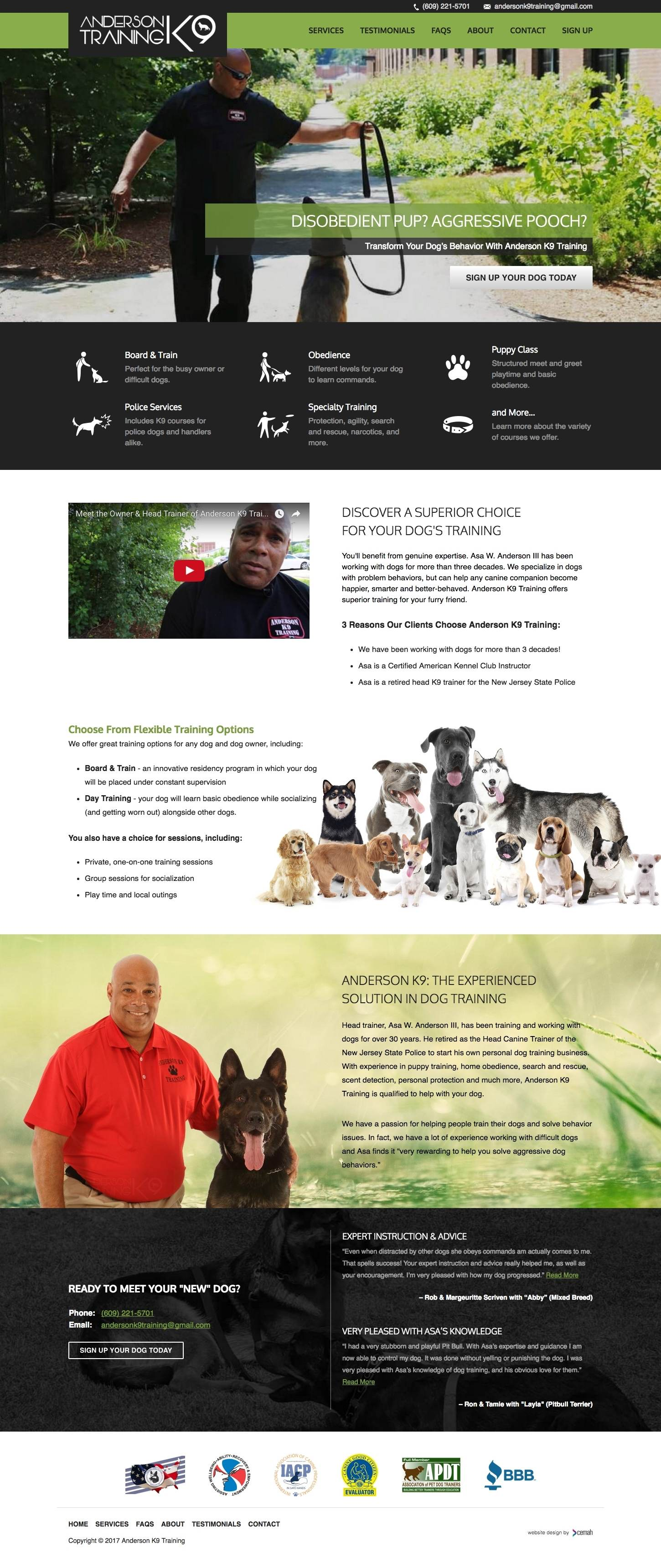 Dog training website design layout featuring the homepage for a k9 training and boarding small business