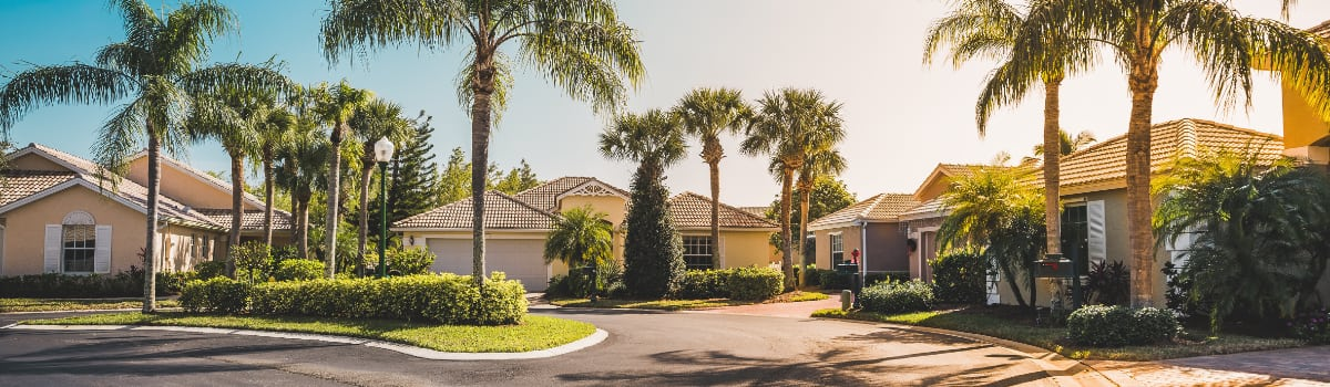 panoramic of florida neighborhood cul-de-sac with palm trees