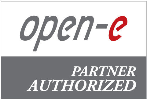 Open-E-Partner-Logo-Authorized