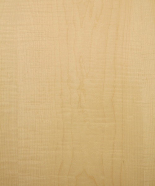 Curly maple wood veneer sample, high figure